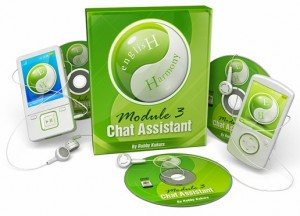 Chat Assistant 300x216 English Harmony System 2.0